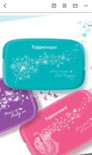 Tupperware Lunch Box
