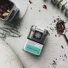 【samova 歐洲時尚茶飲】藻華綠博士茶/無咖啡因/Scuba Garden 潛遊花園(Tea Tin Mini 馬口鐵系列)