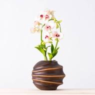 幸福依偎 石斛蘭 (黏土麵包花, 高x寬 / 35x22cm)