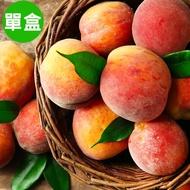 【復興區農會輔導】拉拉山白鳳水蜜桃約2斤~2斤3兩裝 (6顆)/盒