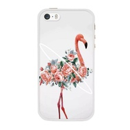 Case for Apple iPhone 5 / 5s / SE Colorful Fashion Pattern Soft Phone Case Cover