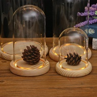 Decorative Clear Cloche Glass Display Dome With LED Wooden Base