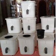 Dutch Bucket Hydroponic Bucket, Dbs Bucket, Dutch Bucket System