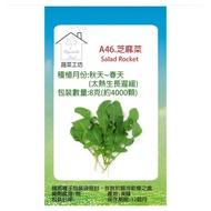 【蔬菜工坊】A46.芝麻菜種子(箭生菜圓葉種)