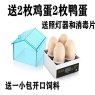 Water bed incubator automatic intelligent chick goose parrot egg incubator incubator egg incubator small household type