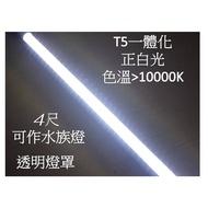 【偉旭日光生活館】LED水族燈 T5不斷光 色溫 13000k 4呎 白光 透明燈罩 LED日光燈 /燈管/附完美配件包