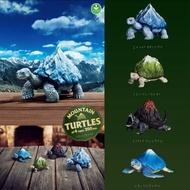 海龜 烏龜🐢 日本最新扭蛋