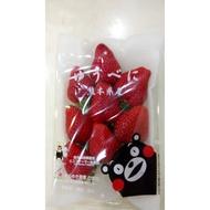 日本草莓.草莓苗. 熊本 熊紅(ゆうべに) 草莓種子