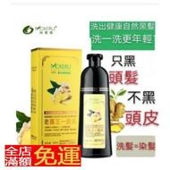 【夢妝】  ✨現貨 官方正品 老薑王草本植物一隻黑 植物染髮劑500ml 老姜王一隻黑 洗染