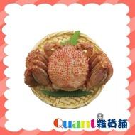 ∮Quant雜貨舖∮┌日本扭蛋┐海洋堂 北海道人物誌及名產 單售 毛蟹