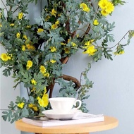 ☌Fotografi bunga bunga rotan bunga buatan alat peraga bunga palsu dinding gantung hiasan hiasan bunga plastik plastik ga