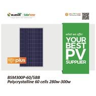 แผงโซล่าเซลล์ Solar Cell นำเข้า Bluesun Poly 300w