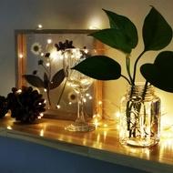 【Elegant Lite】太陽能LED裝飾燈串(太陽能蓄電 - EL19L01)