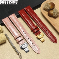 watch band Citizen Watch Strap Citizen/Male Leather Strap BM7300 EX1480 BM8240 Series Female Watch Strap