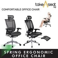 Spring Luxury Ergonomic Chair ★ Mesh Office Chair ★ Adjustable Lumbar Support ★ Home and Office Use