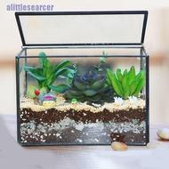 【NEW】TIANTIAN Glass Plant Terrarium, House Succulent Glass Terrarium Kit with Lip Gla