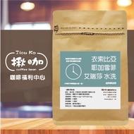 【買10送1免運】淺中焙 衣索比亞 耶加雪菲 艾瑞莎 水洗 咖啡豆