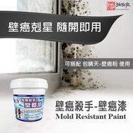 【油漆殿】包晴天 壁癌漆 (1公升/罐裝) 壁癌處理最好用