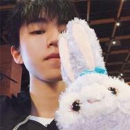 🔥2020免運大促🔥Stella lou史黛拉兔子毛絨公仔達菲熊朋友芭蕾兔可愛娃娃玩具禮物