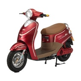 (巴特力) 錡明電動自行車 EG9C