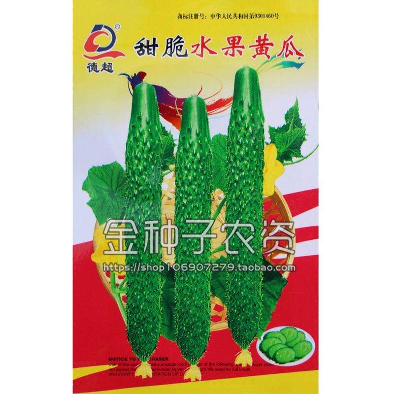 (種子花園)甜脆水果黃瓜種子 短把四季盆栽蔬菜種 小黃瓜旱黃瓜種籽高產大田熱銷