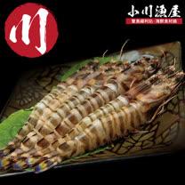【小川漁屋】野生活凍澎湖大明蝦12尾(60G±10%/尾)