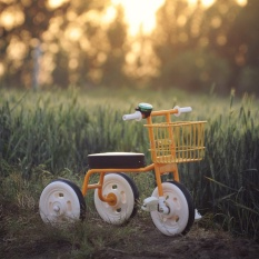MUJI child tricycle - intl
