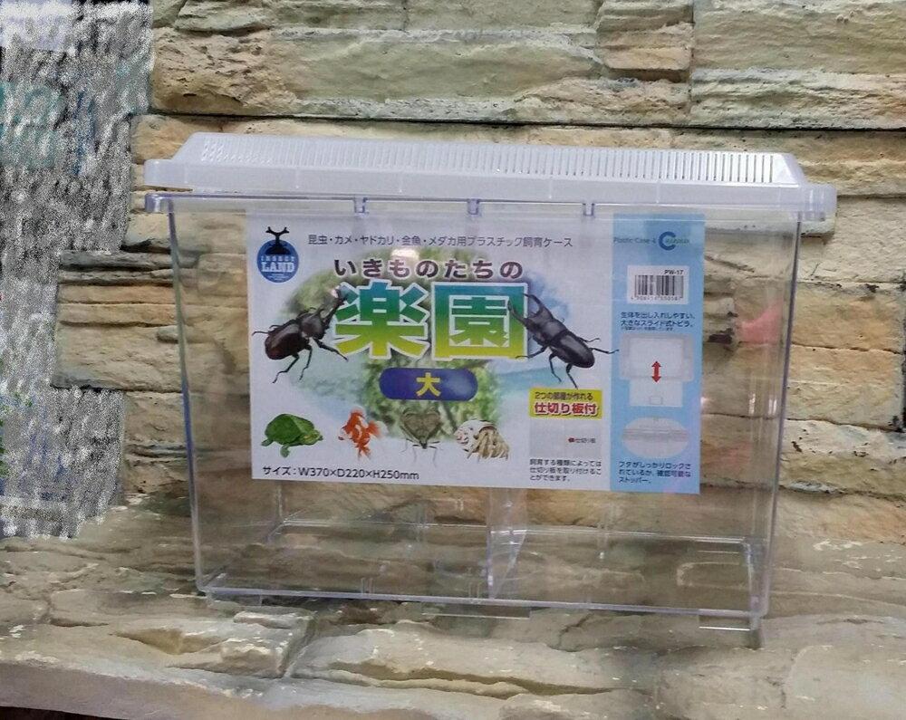【西高地水族坊】日本原裝NISSO 尼索 高透明壓克力繁殖飼育箱(L)隔離箱/鬥魚箱/爬蟲箱