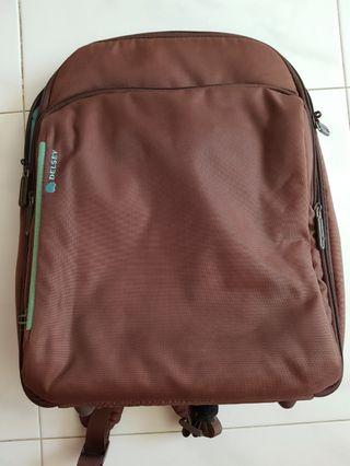 🚚 Delsey Laptop Backpack