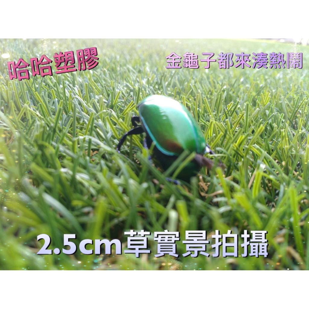 人工草皮 仿真草皮 假草 草地毯 人造草皮 塑膠草皮 哈哈塑膠 進口高品質
