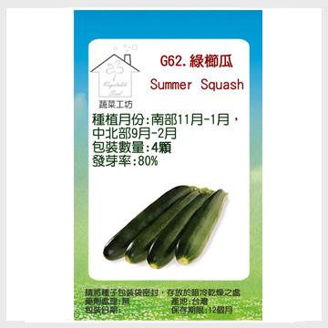 G62.綠櫛瓜(阿菲.夏南瓜.節瓜.嫩南瓜.美國南瓜)種子