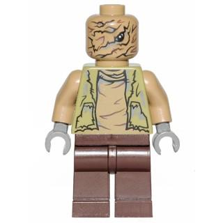 玩樂趣 LEGO樂高 75178 Unkar's Brute 二手人偶