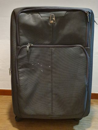 Large Delsey suitcase