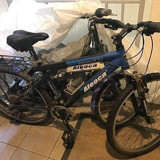 Aleoca bicycle