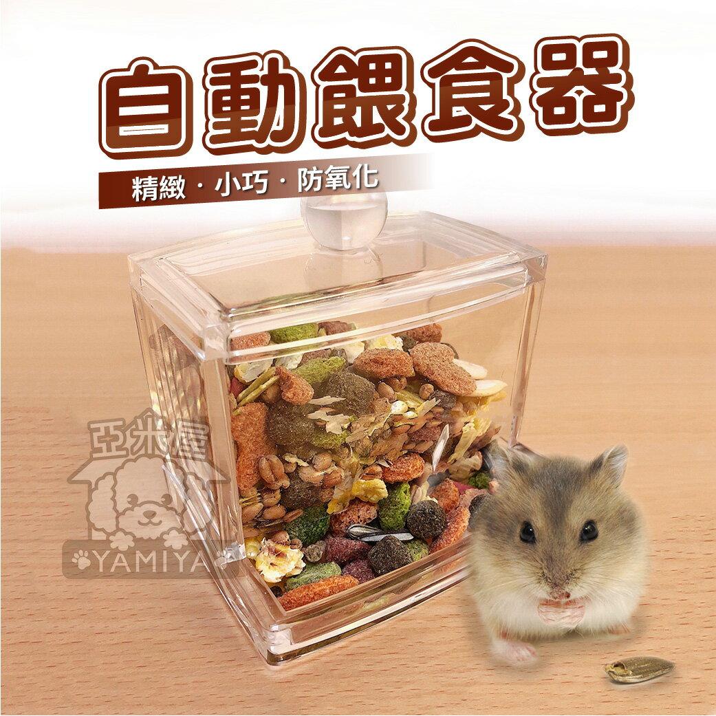 《亞米屋Yamiya》小寵壓克力自動餵食器 寵物鼠餵食盒 自動飼料罐 餵食碗 食盆 蜜袋鼯/兔子/刺蝟/松鼠/熊鼠/黃金鼠