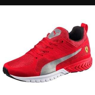 Puma Motorsport Shoes // Ferrari&BMW shoes