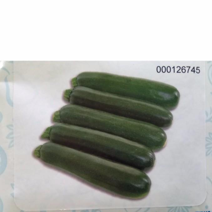 節瓜種子 櫛瓜種子 夏南瓜 綠色 蔬菜種子 分裝 櫛瓜 阿菲 專業農家品種 分裝
