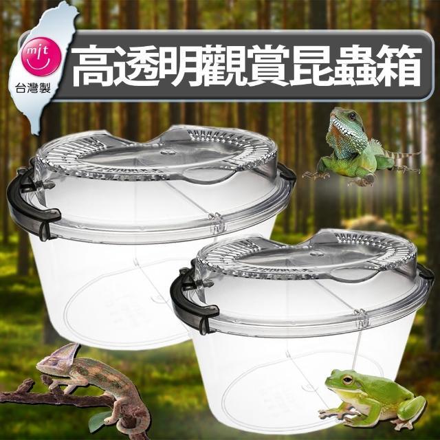 【BESTHOT】高透明觀賞昆蟲寵物箱 中型(外出提箱 飼養箱 分開合養箱)