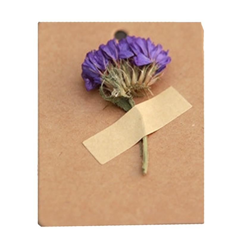 [現貨]乾燥花牛皮紙手工許願卡 禮物留言卡 吊牌 小卡 卡片【JC3153】《Jami Honey》