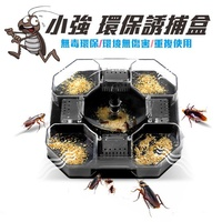 小強 蟑螂誘捕盒【好買居家】 蟑螂捕捉屋 誘捕器 蟑螂屋 捕蟑盒 蟑螂盒 剋蟑神器