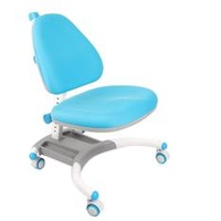 Children Ergonomics Study Chair / Kids Study Chair / Children Ergonomics Study Table Set / Children Ergonomics Study Desk Set / Kids Study Table / Kids Chair Adjustable Height Table And Chair