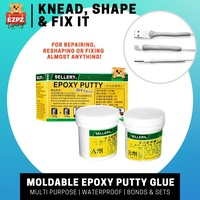 SELLERY Mouldable Repair Epoxy Putty, Waterproof - 250g