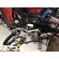 兒童ANIMATOR ADORE 捷安特 美利達 富士 小折 20吋16吋14吋12吋腳踏車喜歡可議價!!