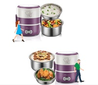 Bear Electric Lunch Box Double Layer Electric Lunch Box