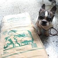 美國 Perma-Guard Inc. 食品級 矽藻土 分裝包(150元)