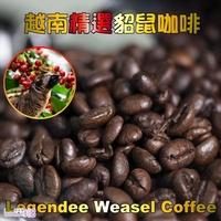 ㊣越南進口 精選貂鼠咖啡豆(500g/包)*2 限量加贈原裝進口不銹鋼越南滴滴壺
