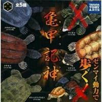 龜甲記神,扭蛋,發條龜 烏龜 陸龜 楓葉龜 草龜