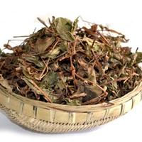 【魚腥草茶】道地台庄/泡茶專用降火氣《M23》