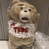 日本正版 53cm 泰迪 熊麻吉 ted2 娃娃 玩偶 toreba 景品