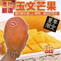 【果之蔬】台灣嚴選玉文芒果(7~9入/約10斤±10%含箱重)
